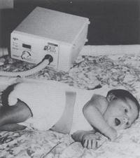 Школа ИТ новорожденных: Теоретические основы