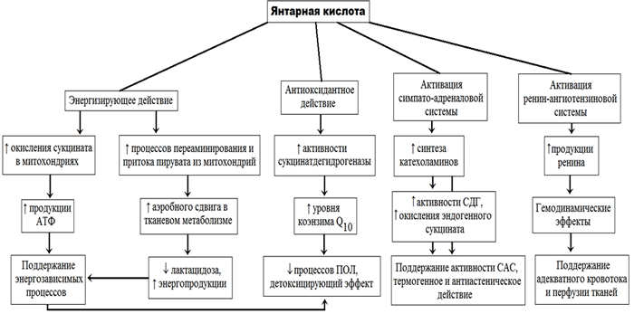 Антигипоксанты препараты для мозга